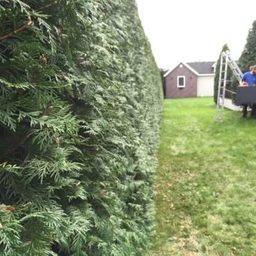 Obnova a údržba zahrad
